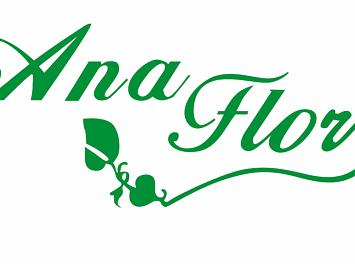 Floraria Ana Flor Nunta Cluj